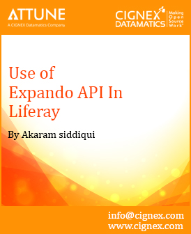 31 - Use Expando API in Liferay.jpg