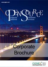 CIGNEXDatamatics_CorporateBrochure