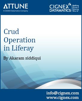 05 - CRUD operations in Liferay.jpg