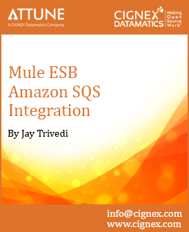 17 - How to work with Mule ESB on Amazon SQs.jpg
